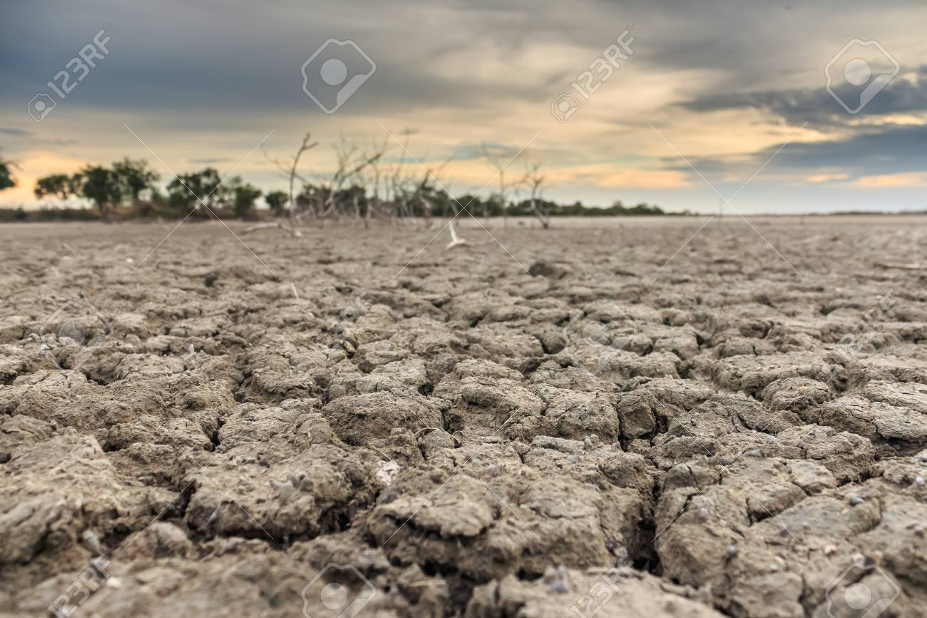 Land with dry and cracked ground. Desert - 43622137