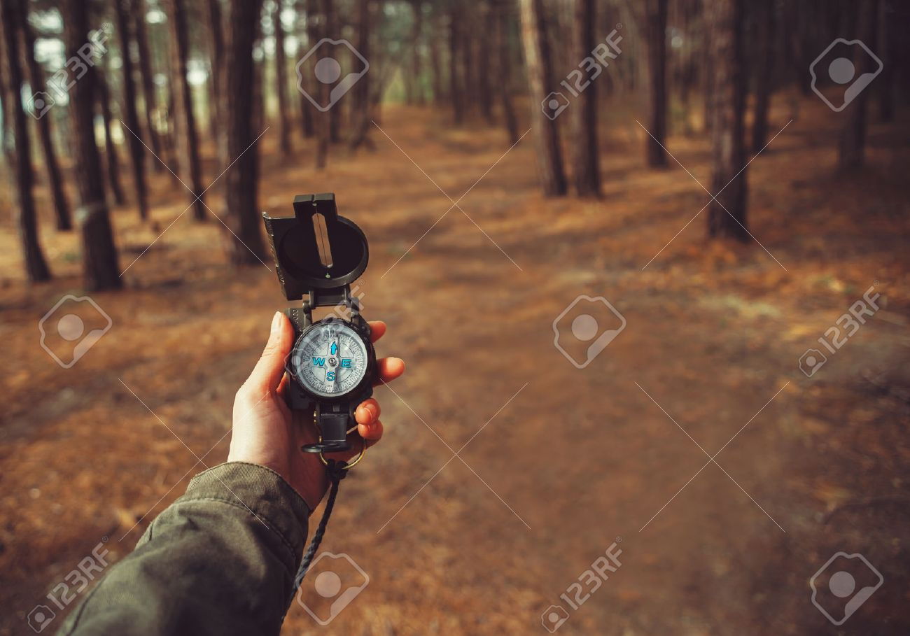 Hiker woman searching direction with a compass in the forest. View of hands. Point of view shot. Space for text in right left of image - 42144335