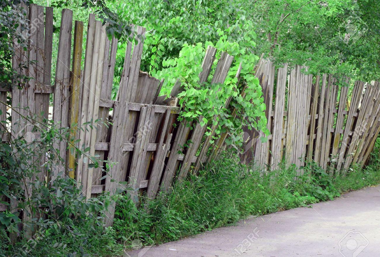 Staccionata Bianca In Legno un vecchio indossato recinzione di legno che cade più e ha bisogno di  riparazione
