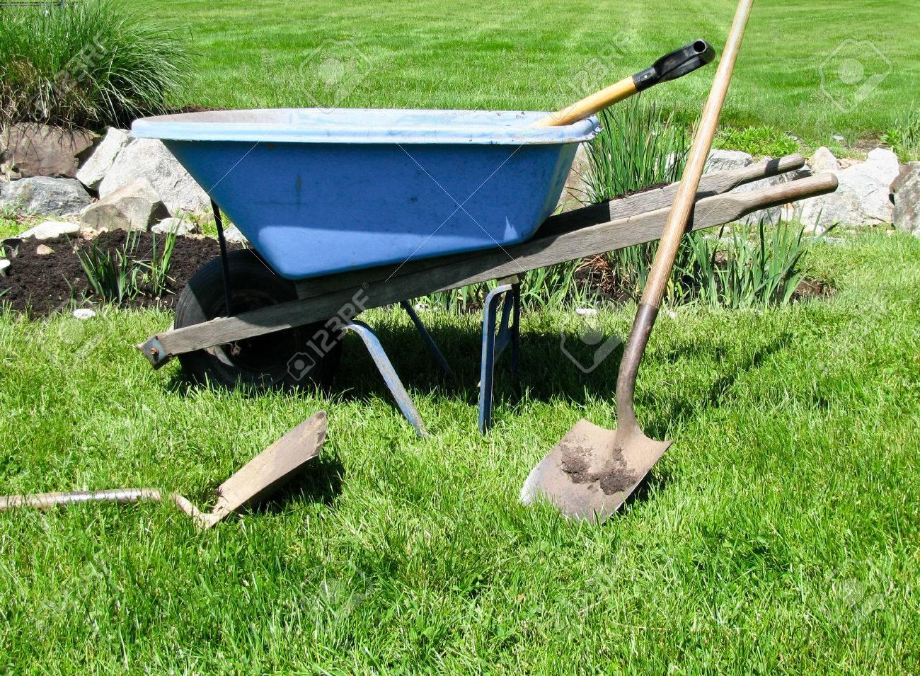 Stock Photo   Sustainable Garden, Blue Wheelbarrow And Gardening Tools