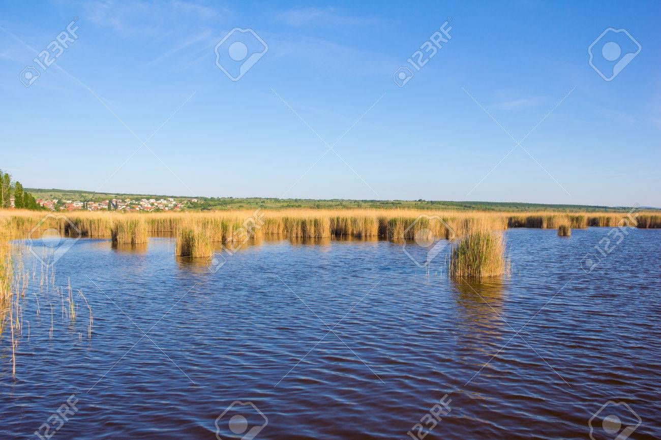 Beach In Mrbisch At Lake Neusiedl Stock Photo - 40548709