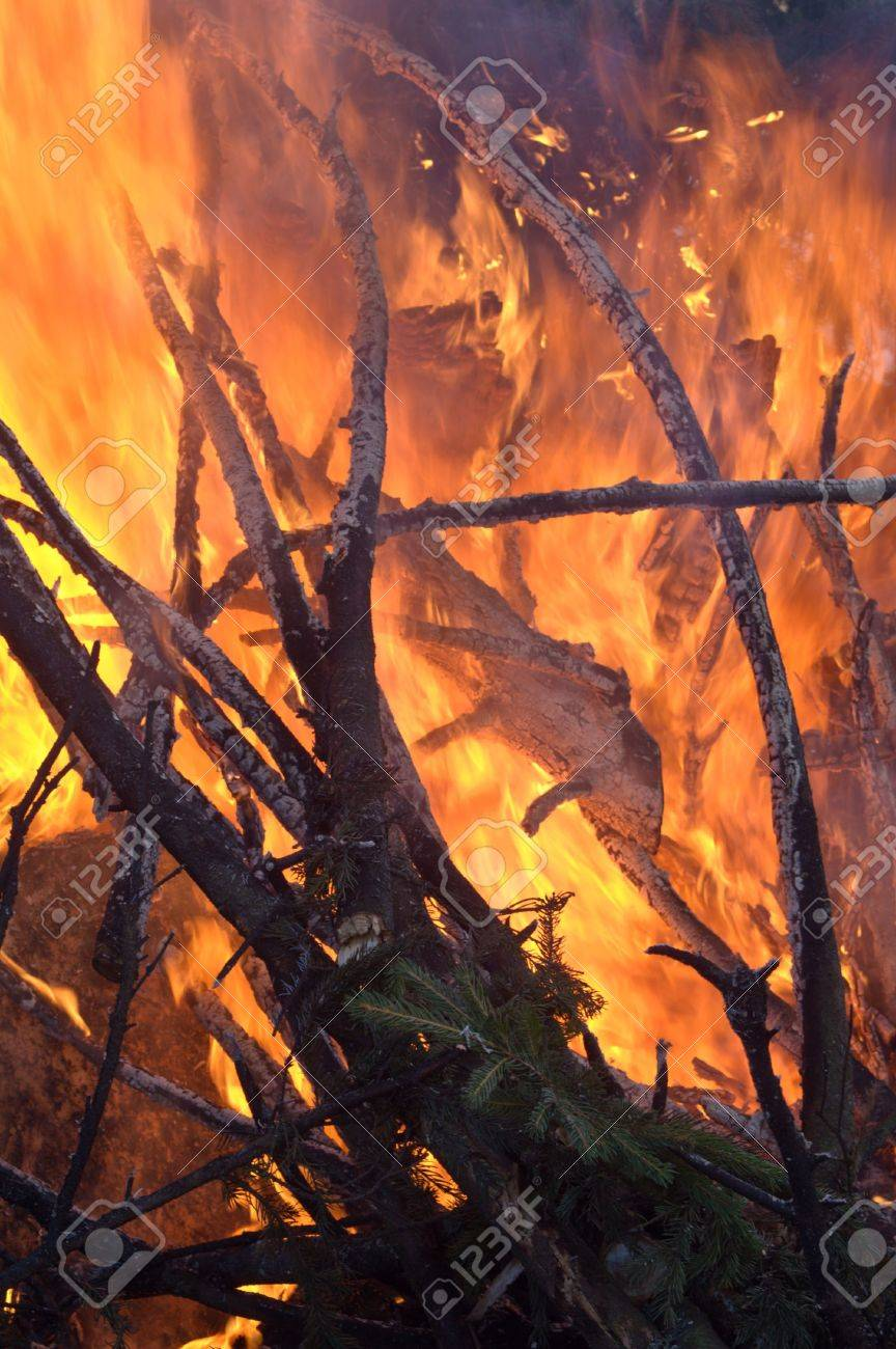 Forest fire - close-up shot of yellowand red flames. Stock Photo - 4318469