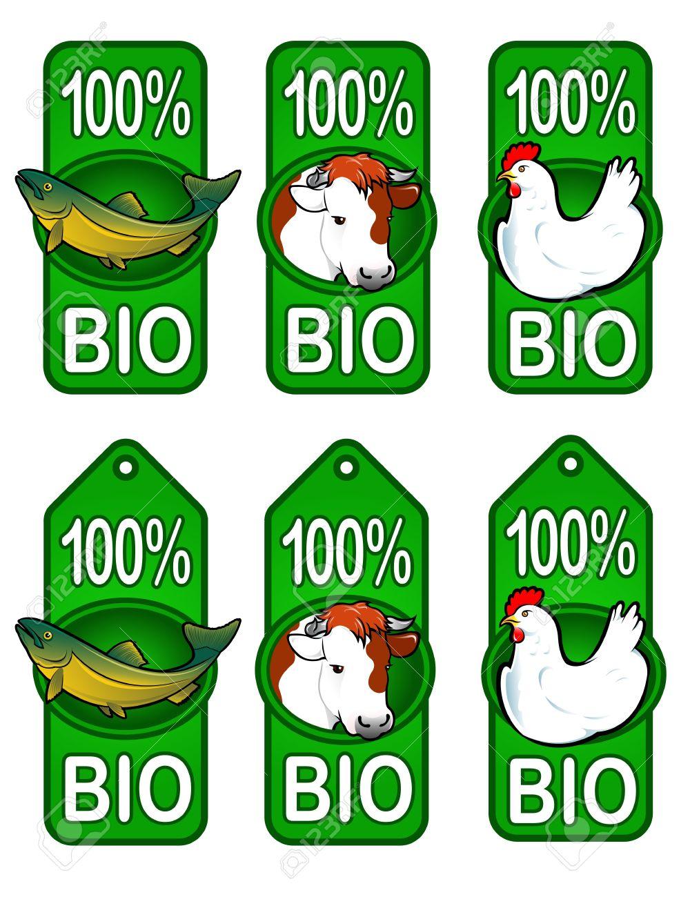 Bio Labels / Fish, Beef, Chicken Stock Vector - 9674569