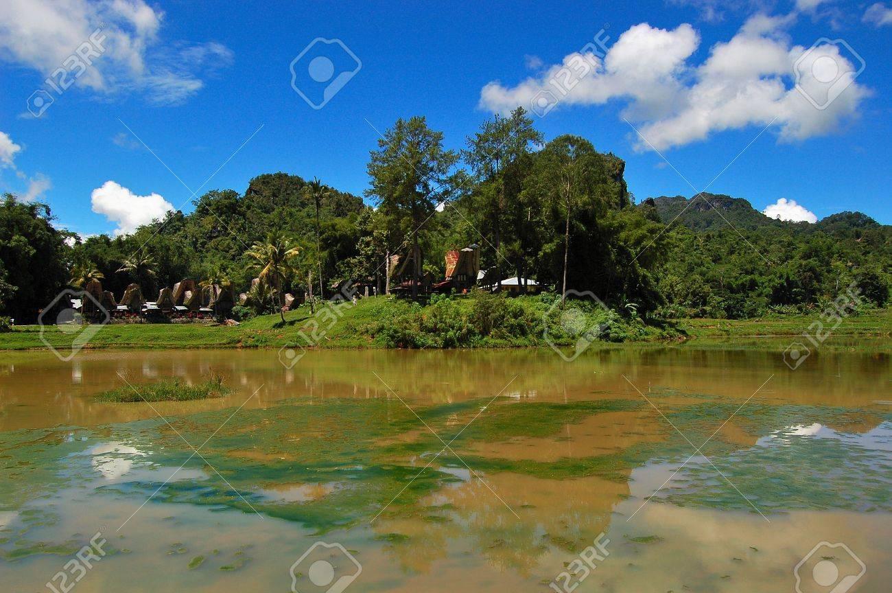 Traditional village of Ke'te Kesu, Toraja, South Sulawesi, Indonesia Stock Photo - 6843588