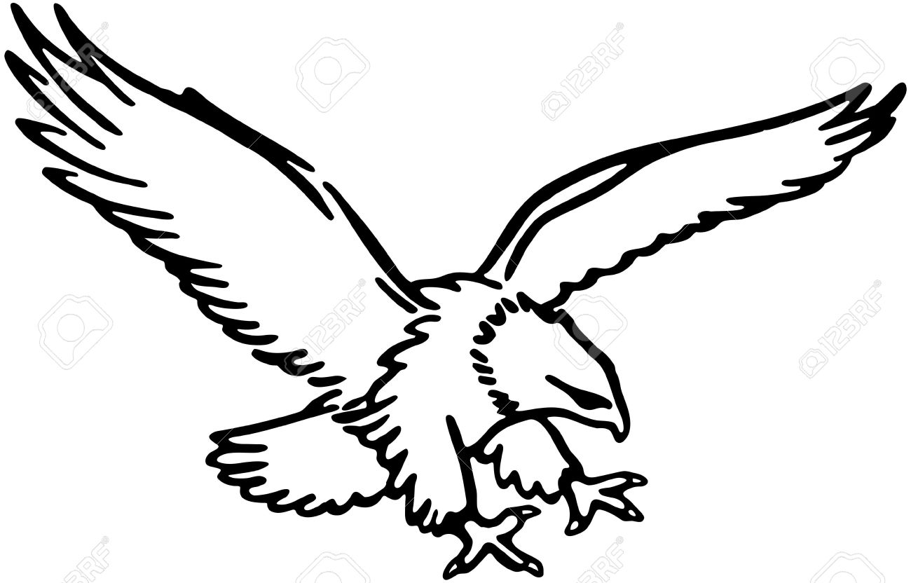 Flying Eagle Royalty Free Cliparts Vectors And Stock Illustration
