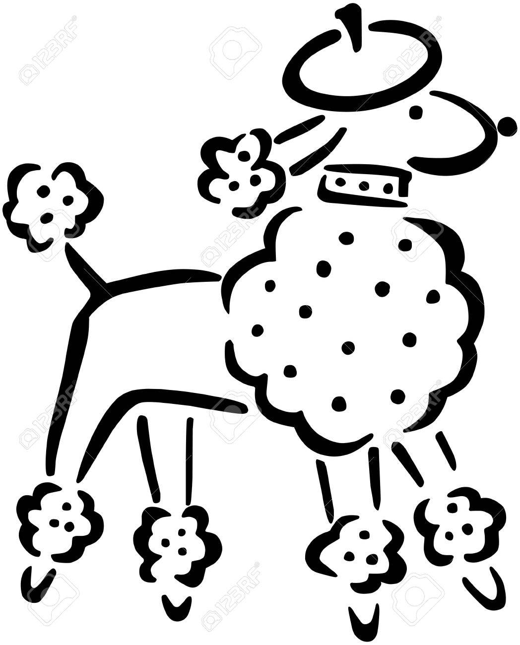 french poodle royalty free cliparts vectors and stock illustration rh 123rf com French Poodle Cartoon french poodle clipart