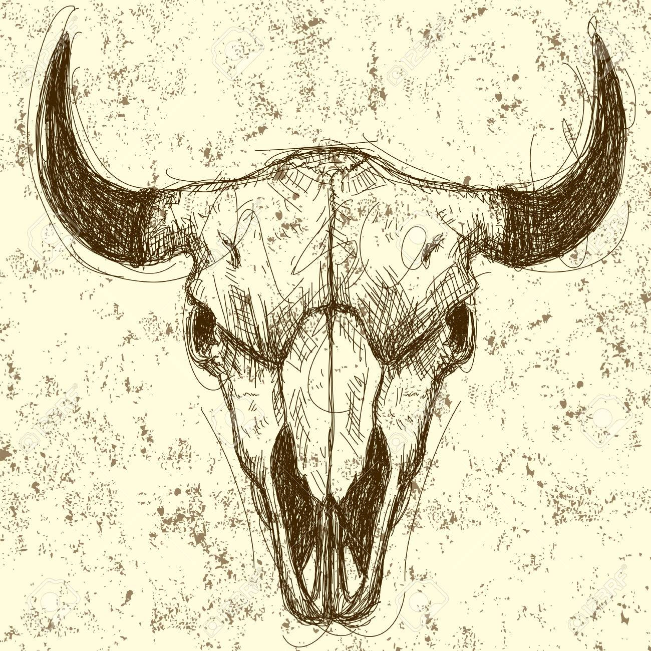 Cow Skull Drawing Over An Abstract Background The Artwork And