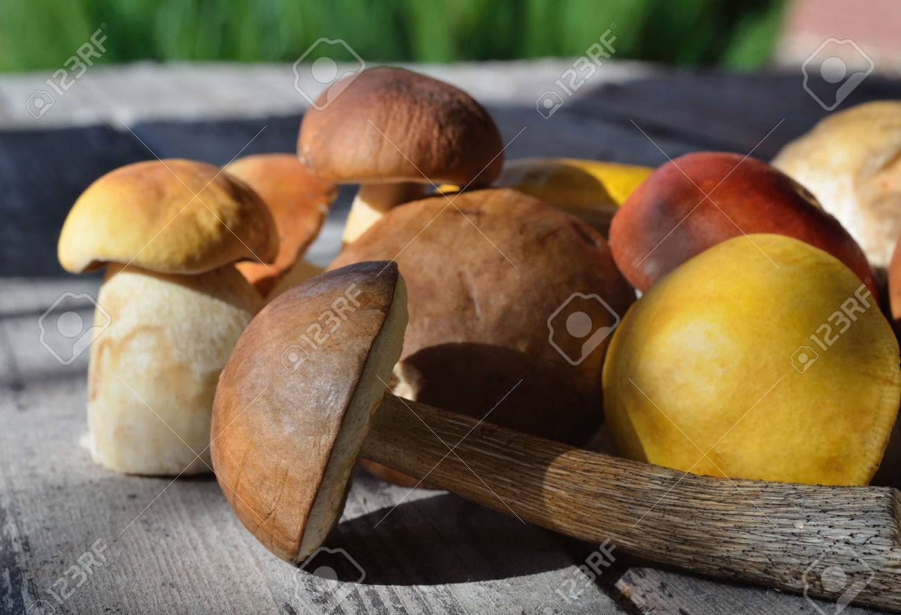 mushrooms on a wooden surface - 58304322