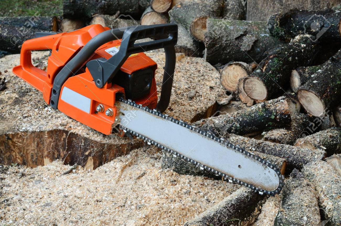 chainsaw and sawed wood - 61838771