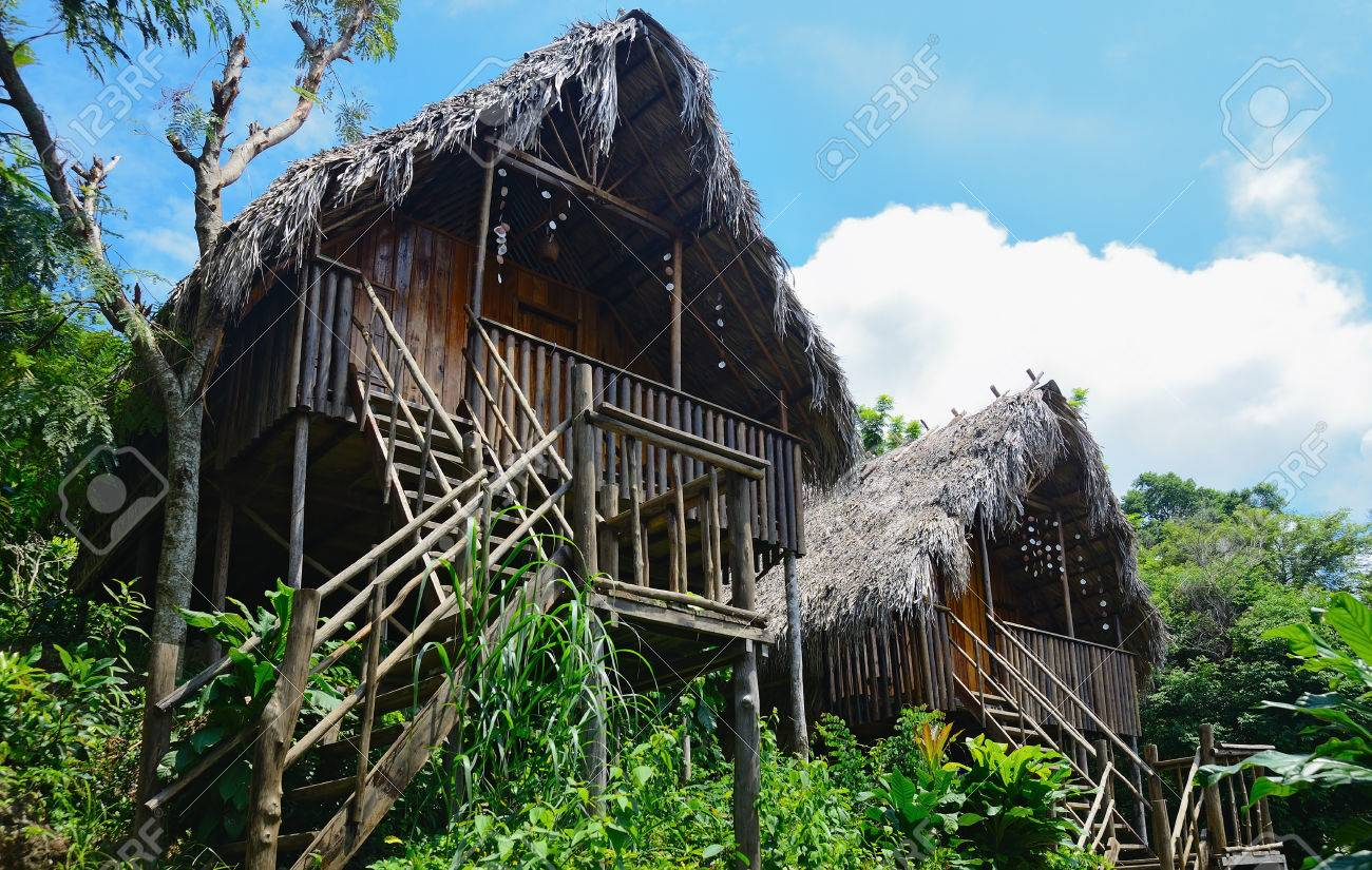 bungalows with thatched roof in a tropical forest - 74333151