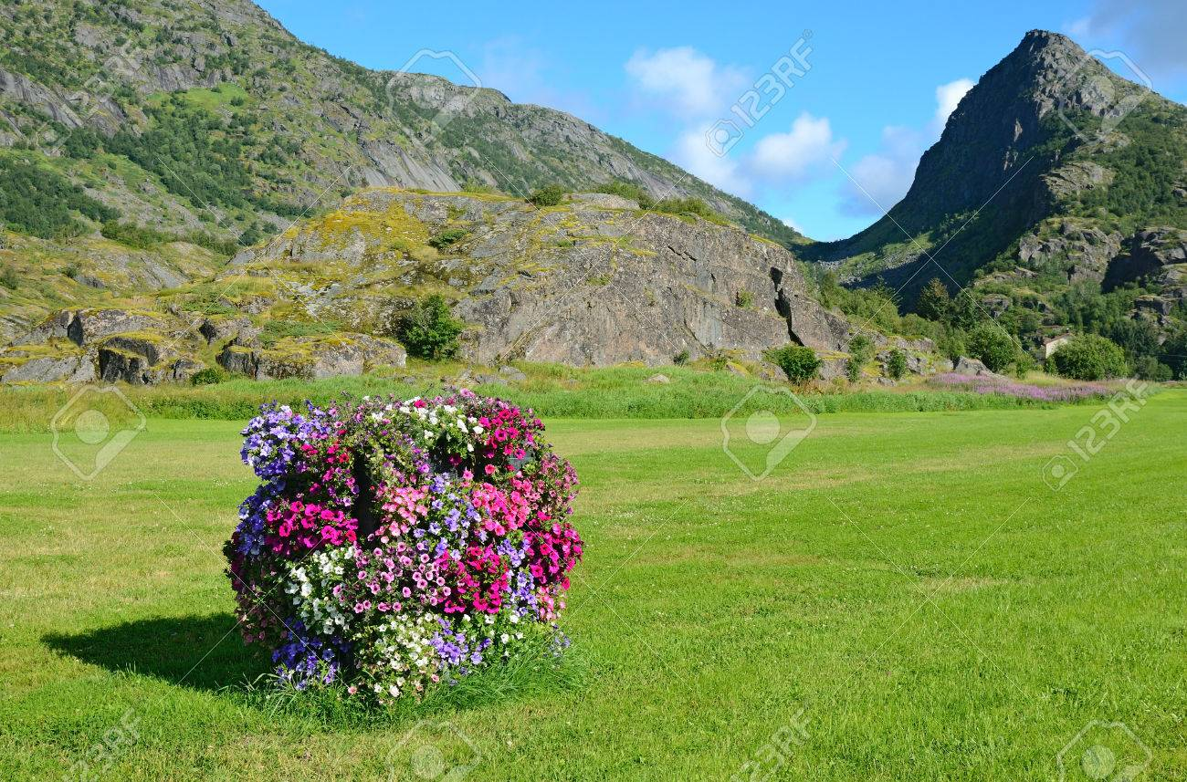 Norwegian rural view with a vertical flowerbed - 78247069