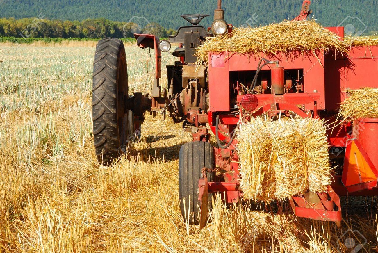 Old style hay baler in a wheat straw field in Umpqua Oregon