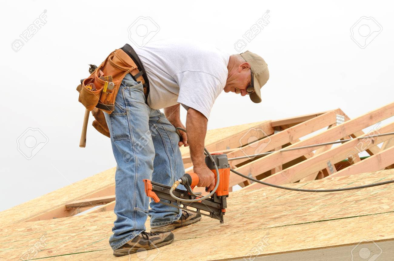 framing contractor installing roof sheeting over rafters on a new commercial residential construction project stock photo