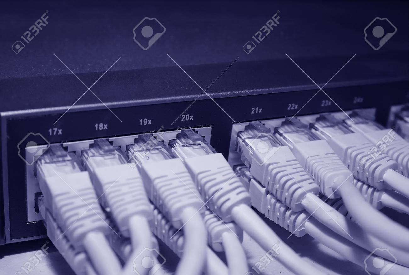 Network cables connected to a switch (blue tone) Stock Photo - 1141840
