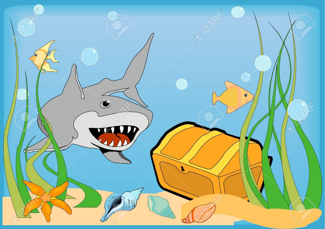 Image result for treasure chest shark