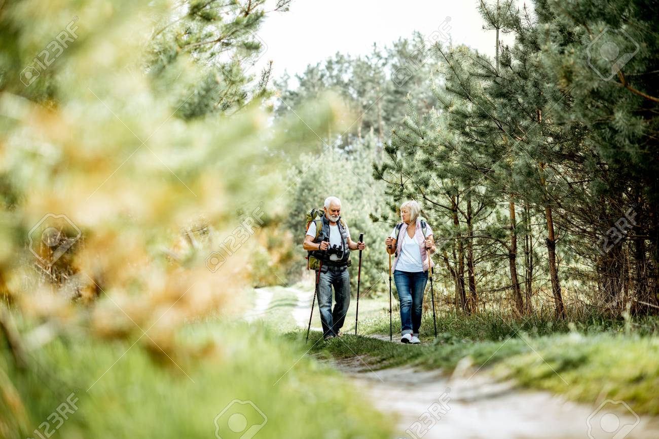 Happy senior couple hiking with trekking sticks and backpacks at the young pine forest. Enjoying nature, having a good time on their retirement - 122705763