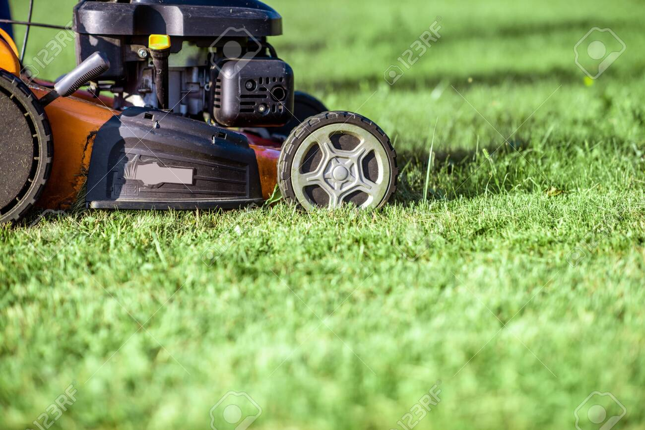 Gasoline lawn mower cutting grass, close-up with copy space. Backyard care concept - 130285829