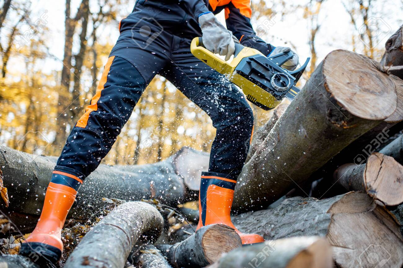 Professional lumberjack in protective workwear working with a chainsaw in the forest, sawing wooden logs, close-up view with no face - 133918035