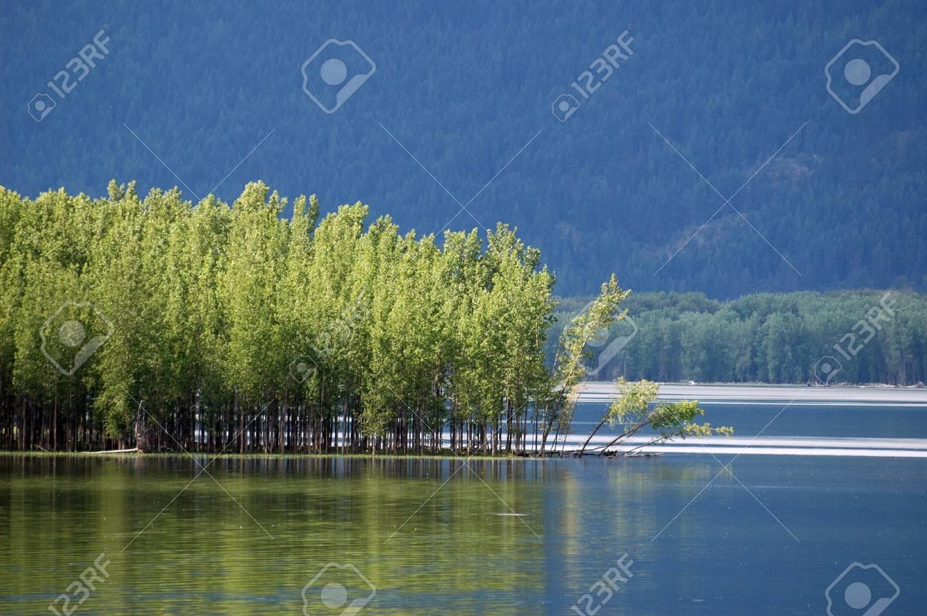 Kootenay Lake, British Columbia. Stock Photo - 10939694