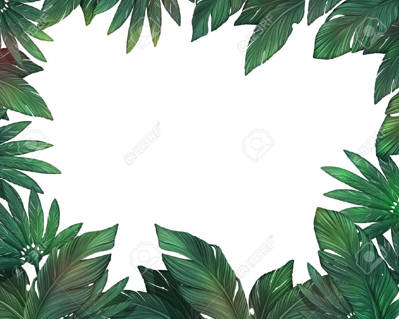 Tropical Leaves Frame Stock Photo Picture And Royalty Free Image Image 50154156 Find the perfect tropical leaf stock illustrations from getty images. tropical leaves frame