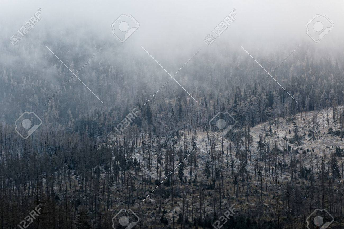 bf7203415 Stock Photo - Textured slope of the mountain covered with low humidity and  mist