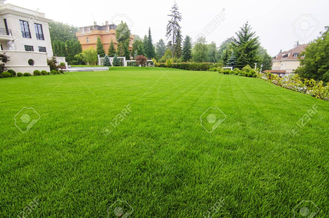 Blick Auf Schönen Rasen Lizenzfreie Fotos Bilder Und Stock