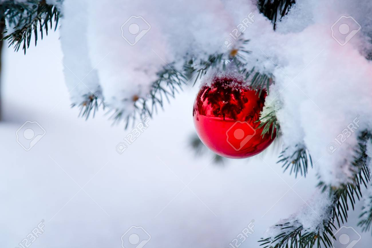 This Bright Red Ornament Hanging From A Snow Covered Christmas
