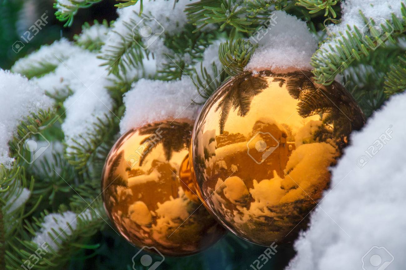Gold Snow Covered Christmas Tree Ornaments Reflect New Mexico Adobe  Buildings Stock Photo  24472724