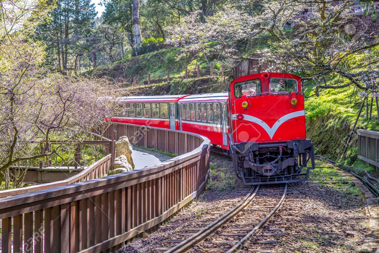 railway in alishan forest recreation area in chiayi - 77866292