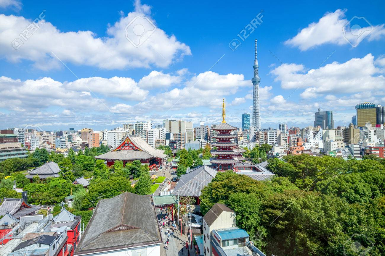 aerial view of Tokyo city - 86859847