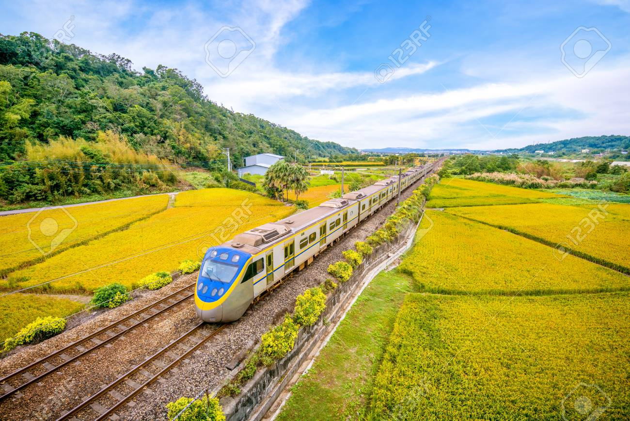 train on the field - 89689539