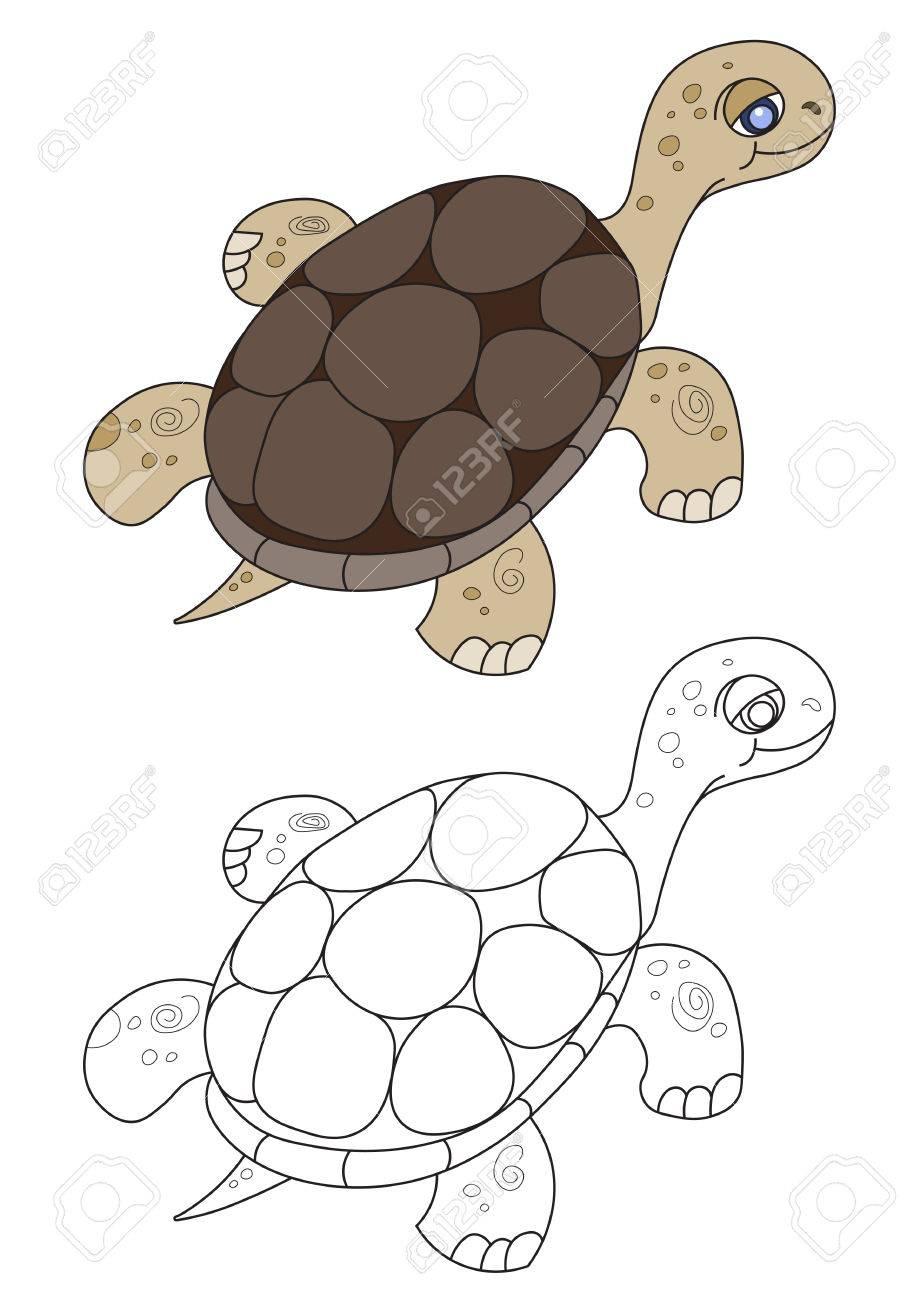 Illustration Der Schwimmenden Schildkröte Für Das Buch Der Kinder ...