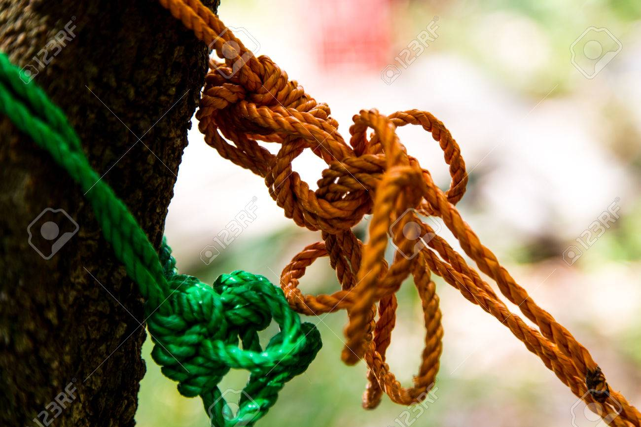 Klettergurt Aus Seil Knoten : Knoten seil im baum lizenzfreie fotos bilder und stock fotografie