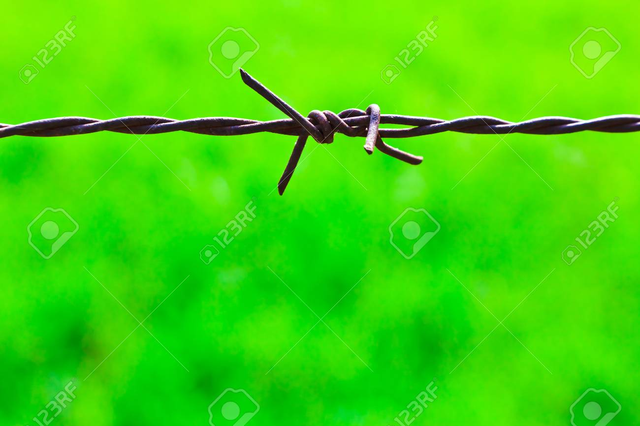 The closeup image of the old rusty barbed wire Stock Photo - 12660907