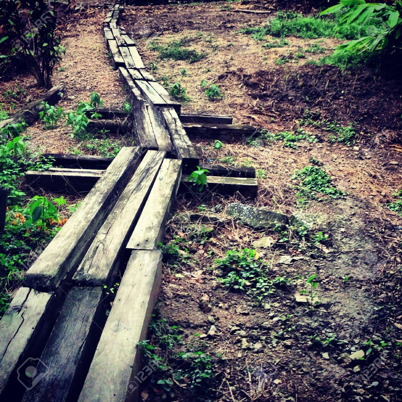 The weathered wooden path on the ground - 21661754