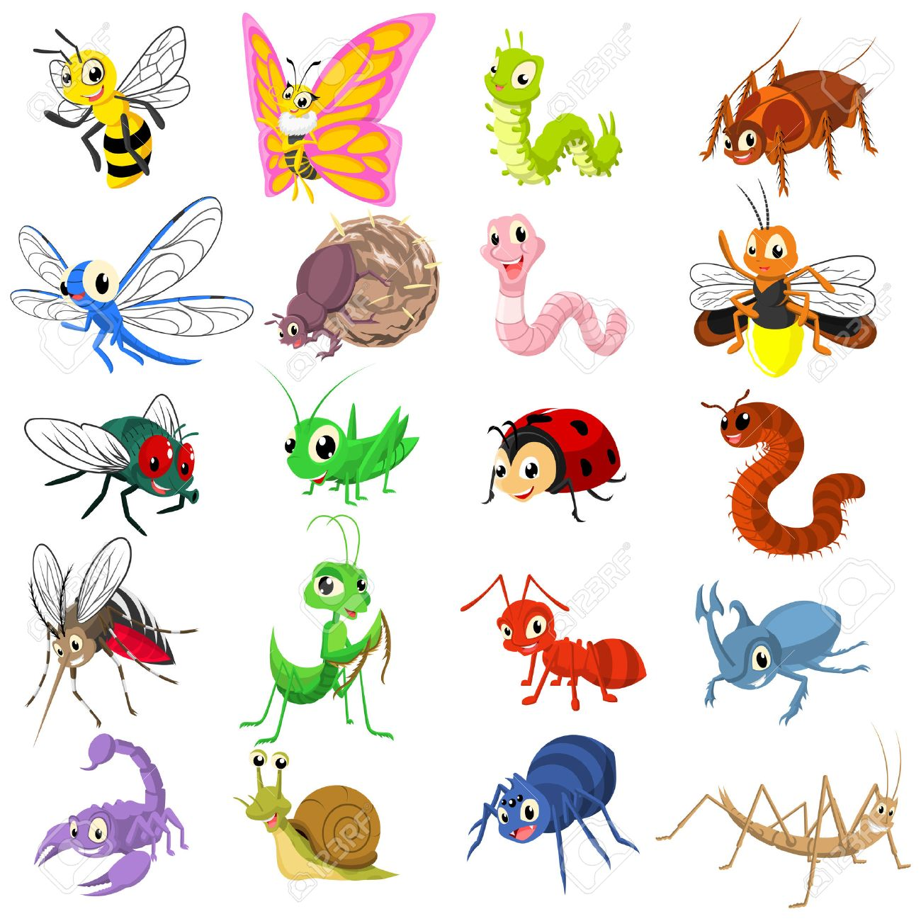 Firefly insect cartoon