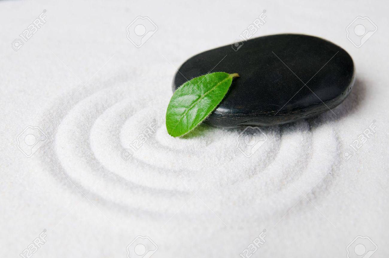 Zen garden pebble detail with green leaf on a raked white sand Stock Photo - 7978395