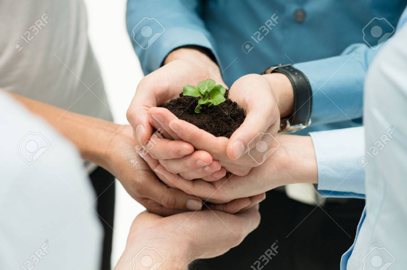 Closeup Of Businesspeople Hand Holding Plant Together Stock Photo - 27613899