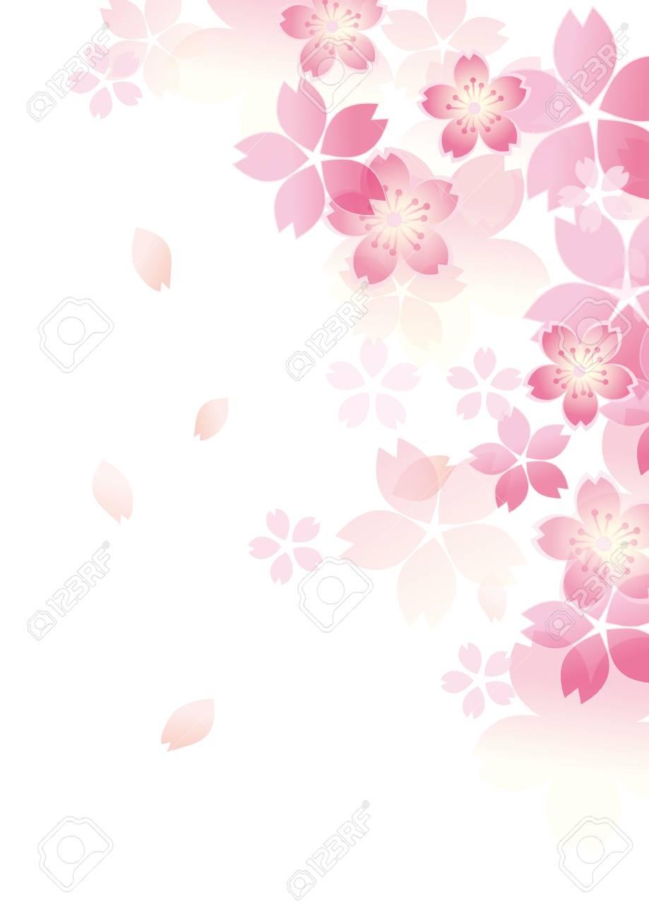 Gentle sakura blossoms illustration. - 93840864