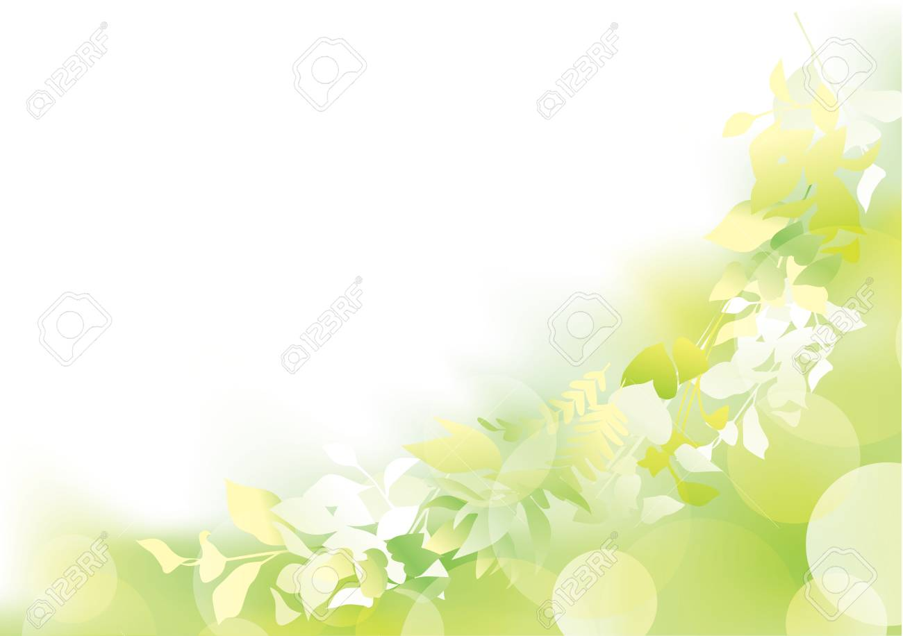 Fresh green in the light - 122822316