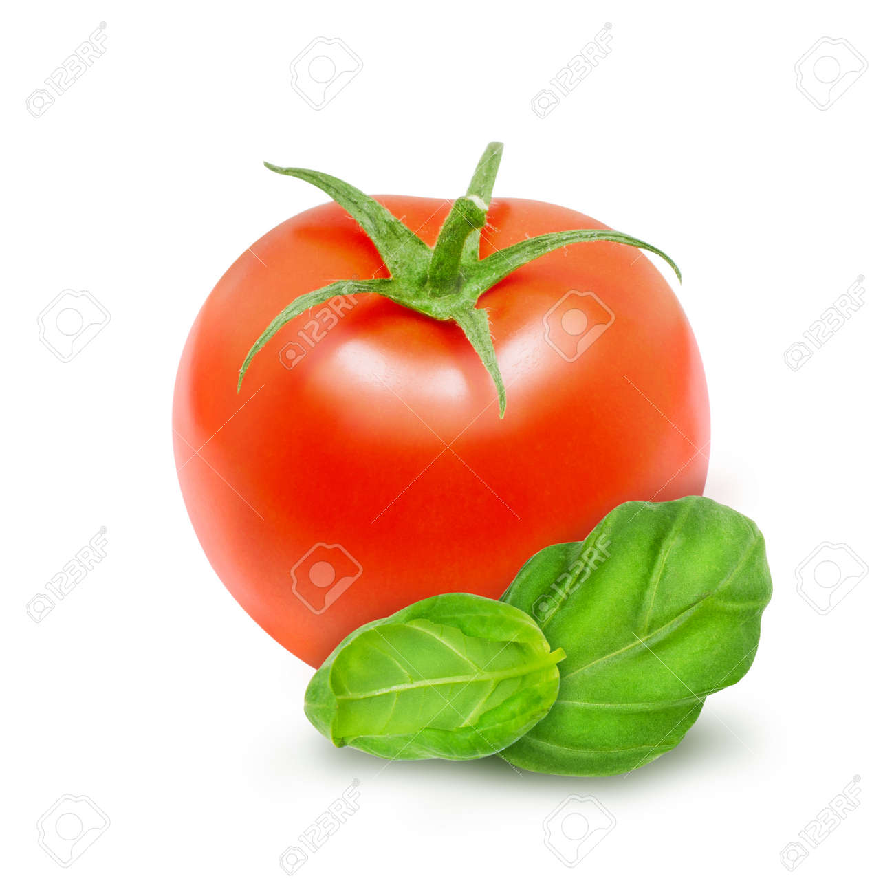 Fresh tomato with green leaves of basil isolated on a white background. Design element for product label, catalog print, web use. - 150175995