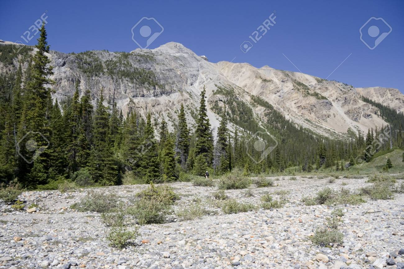 scree in the mountains - canadian rockies, banff national park Stock Photo - 3248145