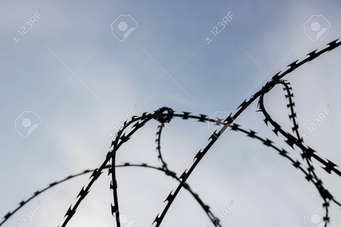 Jail Barbed Wire Background - WIRE Center •