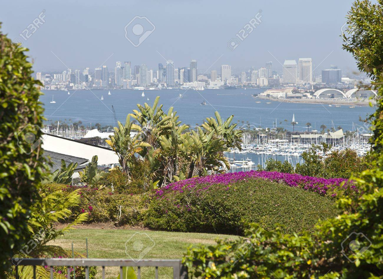 San Diego California A Viewpoint From Point Loma Residential Backyard Stock  Photo   21823612 Amazing Pictures
