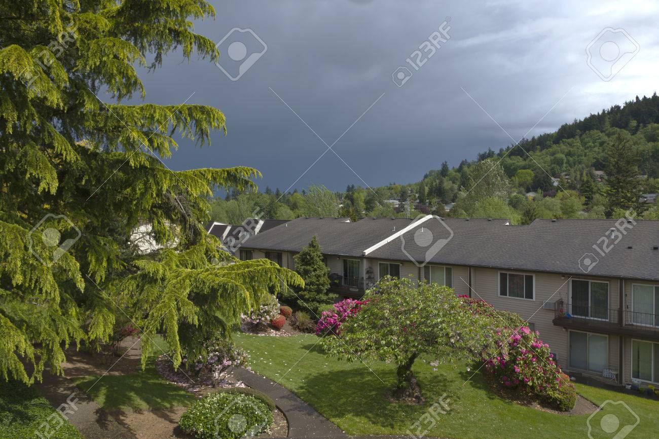 backyard greens and changing weather gresham oregon stock photo