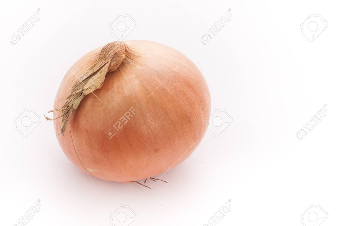 onion on white Stock Photo - 18812977