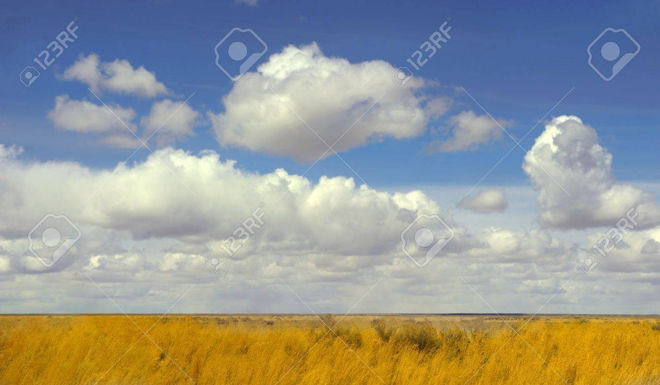Beautiful Image of the fields Of New mexico Stock Photo - 11089378
