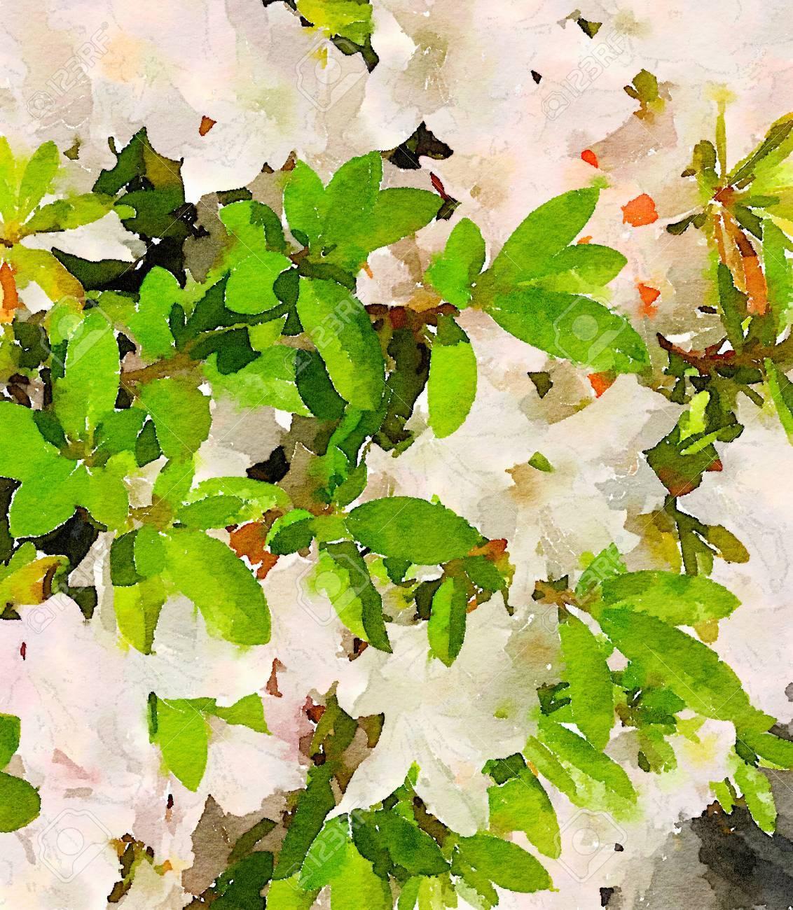 Very nice watercolor of white azalea flower stock photo picture and stock photo very nice watercolor of white azalea flower mightylinksfo