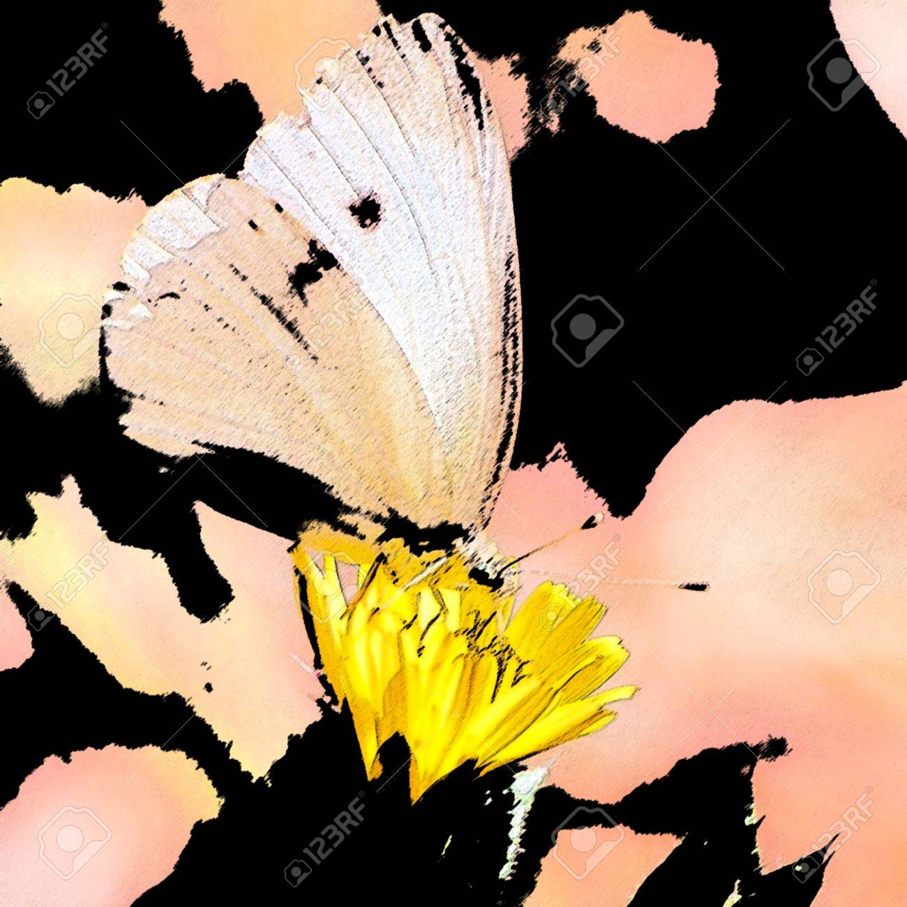 butterfly on flower-sumi e Stock Photo - 11354094