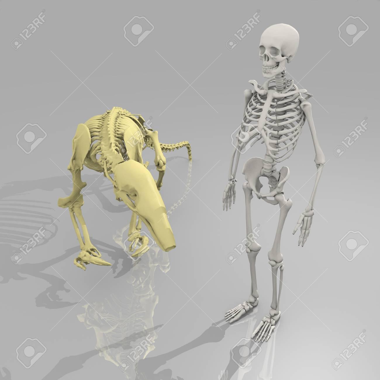 prehistoric couple Stock Photo - 13801999